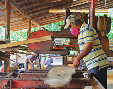 Mys-Teak milling teak wood in Costa Rica